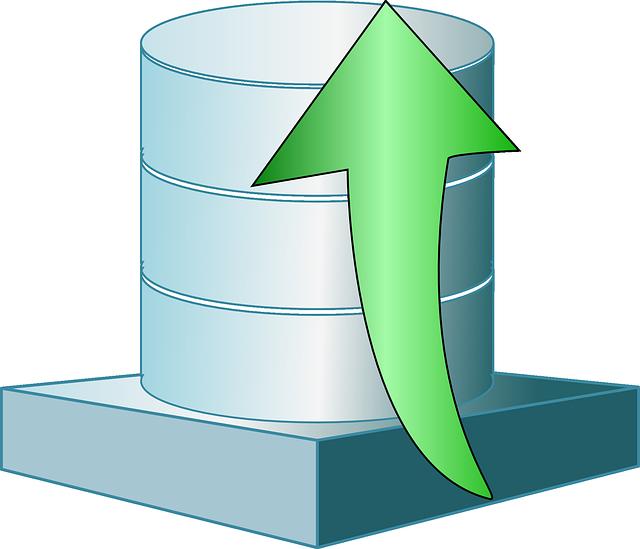 פיתוח תוכנה עם בסיסי נתונים